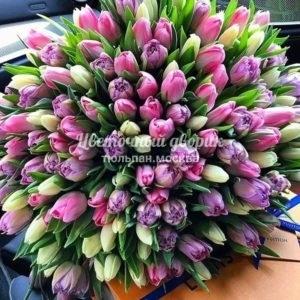 Букет Микс пионовидный из 151 тюльпана
