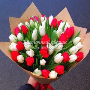 Букет красно-белый из 49 тюльпанов