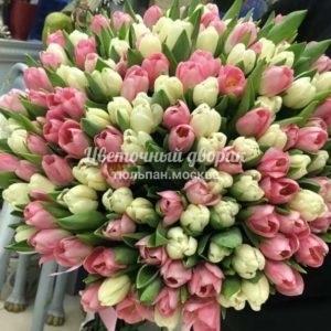 Букет бело-розовый из 151 тюльпана
