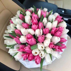 Букет из 75 розовых и белых тюльпанов в крафте