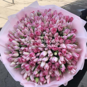 Букет из 201 розового тюльпана в крафте